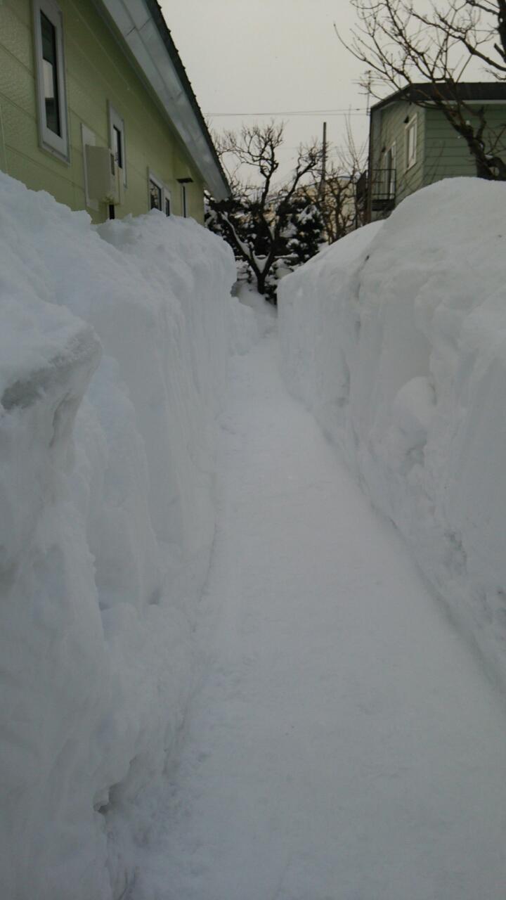 雪のトンネル貫通